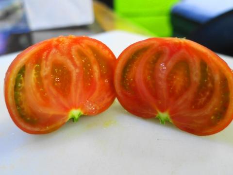「スーパーフルーツトマト」⑦