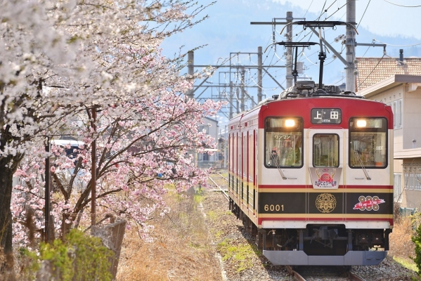 2018年4月10日 上田電鉄別所線 塩田町 6000系6001編成