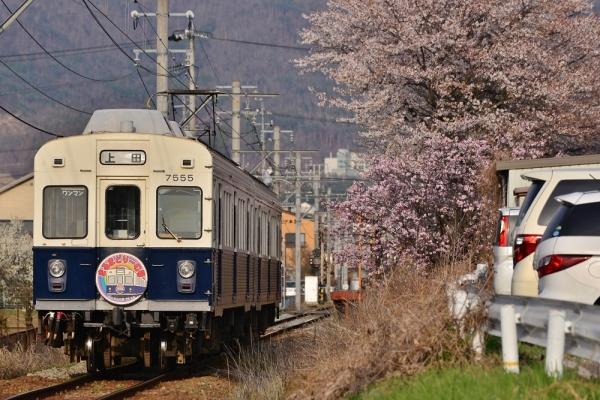 2018年4月10日 上田電鉄別所線 中野~塩田町 7200系7255編成