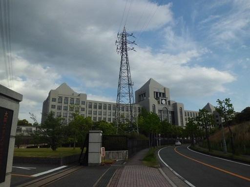 津田洞ヶ峠線20号