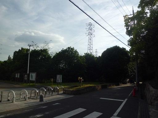 津田洞ヶ峠線5号