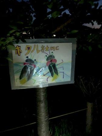 hotarunoyuube65.jpg