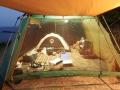大浜海水浴キャンプ2タープ内