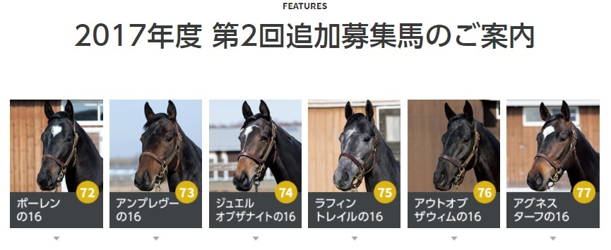2017第2回追加募集馬