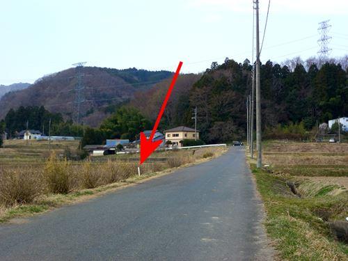 nakahara5.jpg