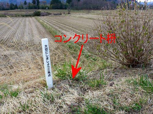 nakahara6.jpg