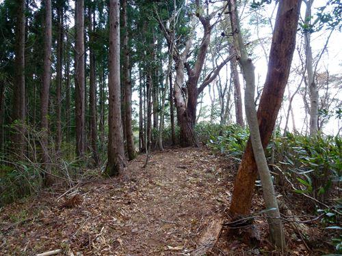 oohinata12.jpg