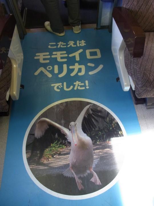 旭山動物園号17