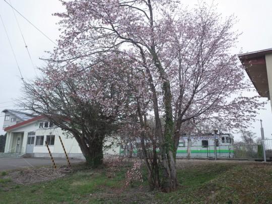 川端駅20