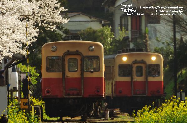 20180329里見駅