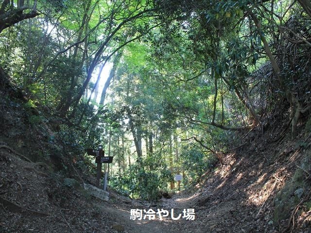 八王子城IMG_9072