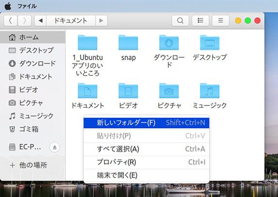 Ubuntu 18.04 macOS High Sierra テーマ
