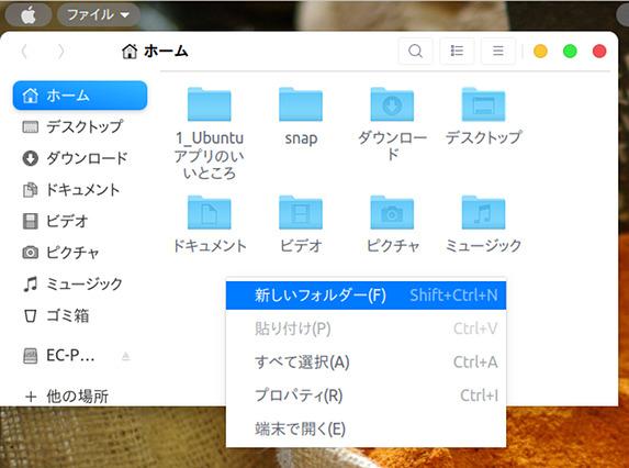 Ubuntu 18.04 macOS11 テーマ