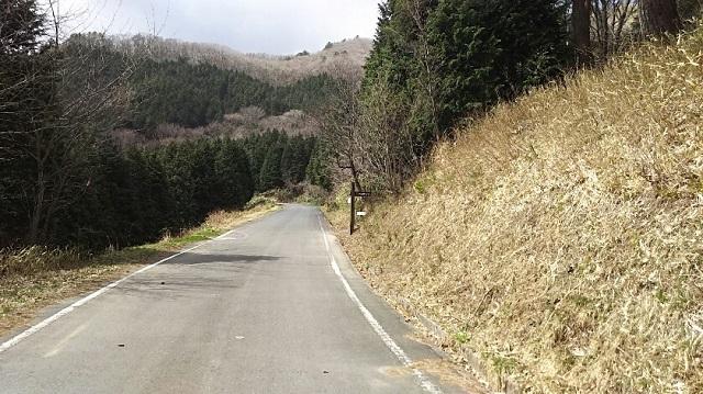 180404 三平山① ブログ用