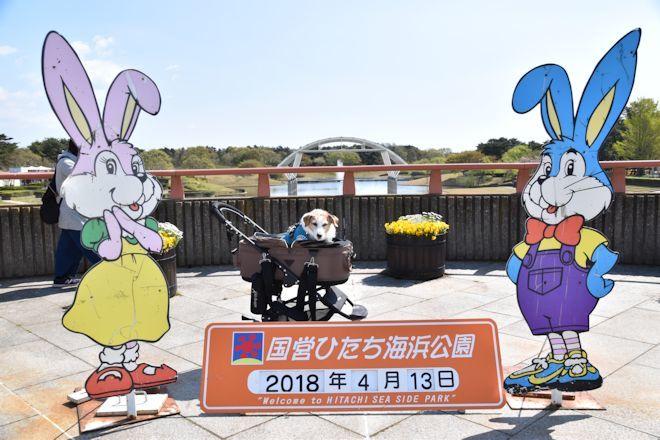 2018おでかけ137