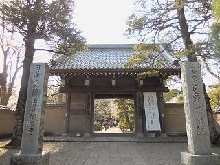2018sakura14.jpg