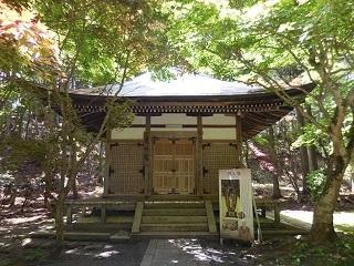 shigasakamoto_35.jpg