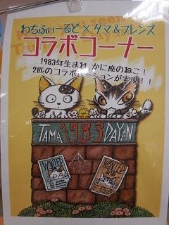 uchitama12.jpg