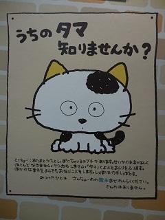 uchitama4.jpg