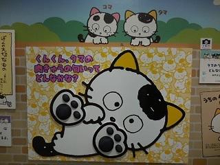 uchitama5.jpg