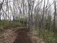 300m程の遊歩道(山道)を歩いて梅林へ向かいます。
