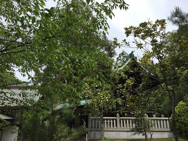 木華佐久耶比咩神社 本殿