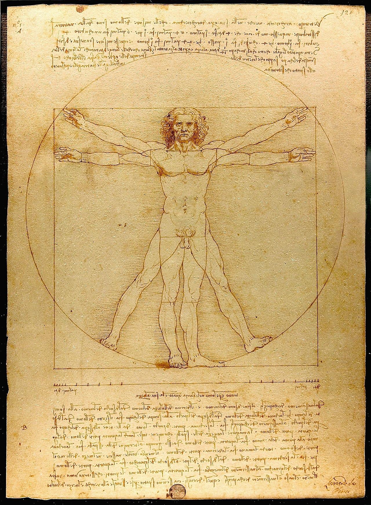 ダヴィンチと、潜在意識、阿頼耶識、そして瞑想法