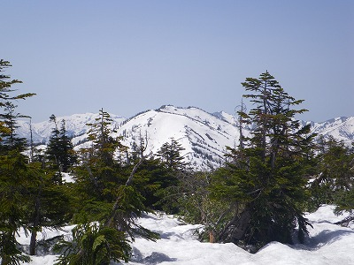 赤倉岳の姿