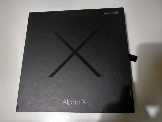 MAZE_Alpha_X_02.jpg