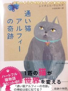 『迷い猫アルフィーの奇跡』