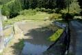 田植え前の水田