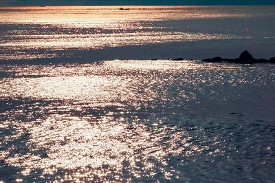 浴びる夕陽No1-1-1