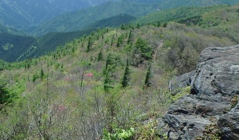 赤石山系縦走 062-001