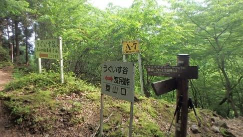 万年山&犬ガ岳~求菩提山縦走 056