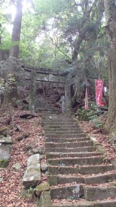 万年山&犬ガ岳~求菩提山縦走 090-001