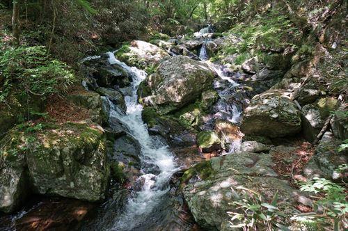 3千猿の滝