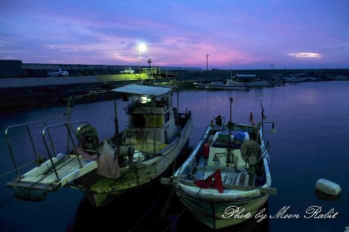 桜井漁港の早朝