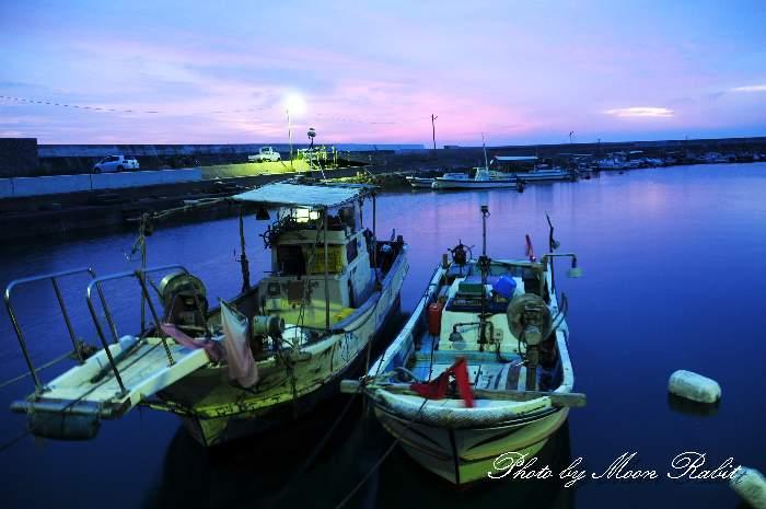 桜井漁港の朝