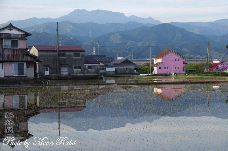 ピンクの壁の住宅と逆さ石鎚山 愛媛県西条市禎瑞高丸