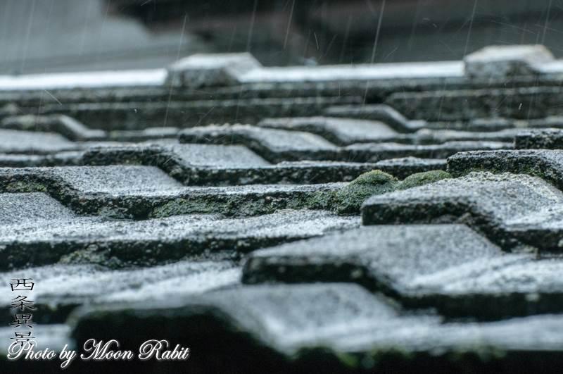 屋根瓦と雨 愛媛県西条市神拝