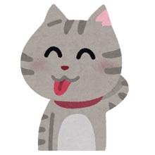 pet_tehe_cat_20180401182131d9d.jpg