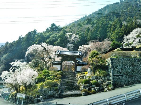 身延5山寺