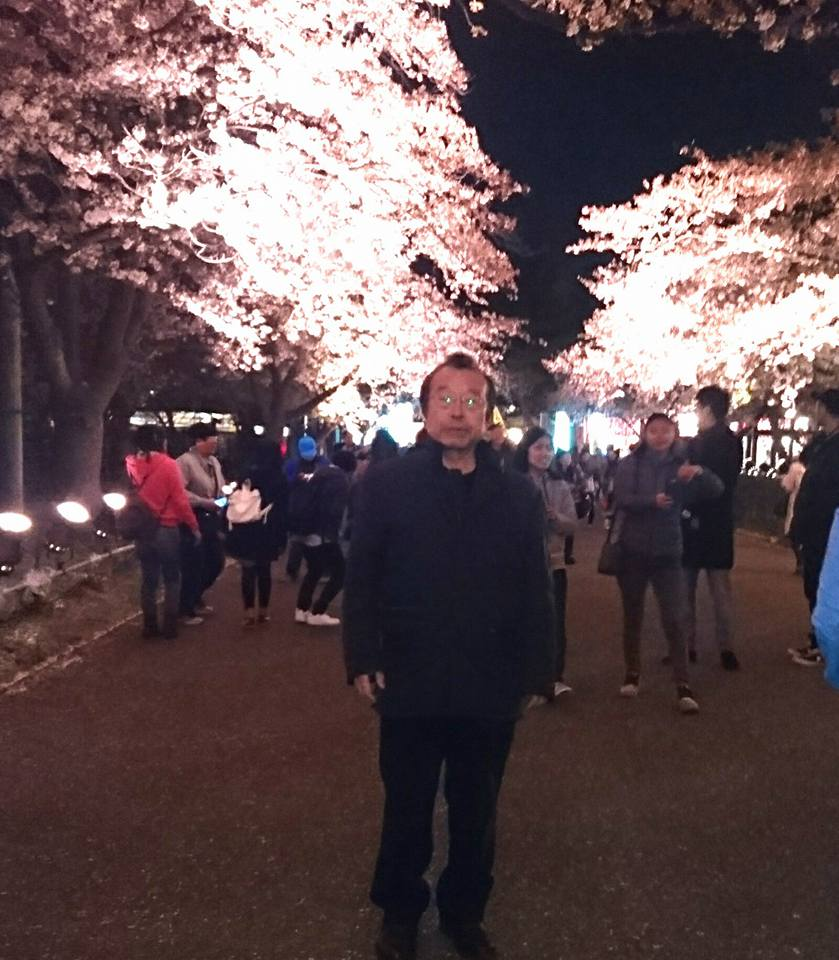 【高田の夜桜2018】-1