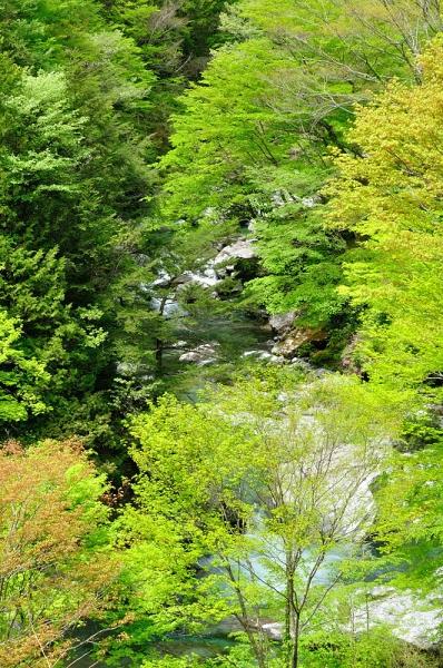 7瀬戸川180426