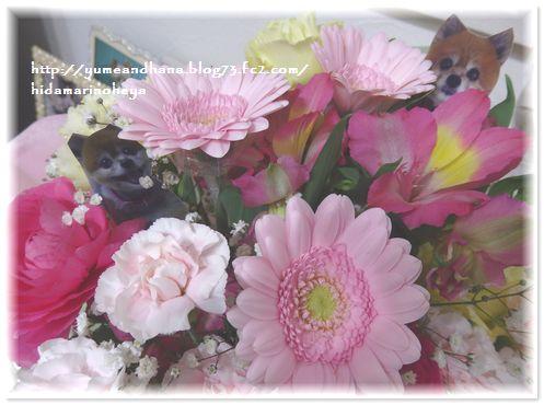 001-ゆめ命日お花180518-2