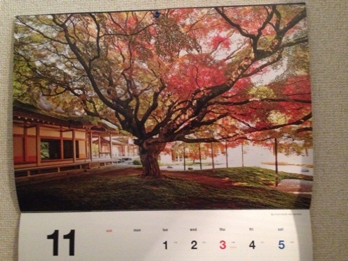 楓 カレンダー
