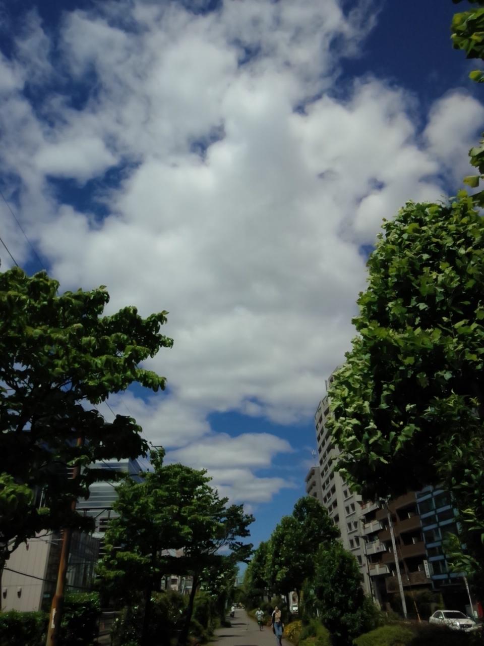 2018May20running水色の空と雲KIMG0060