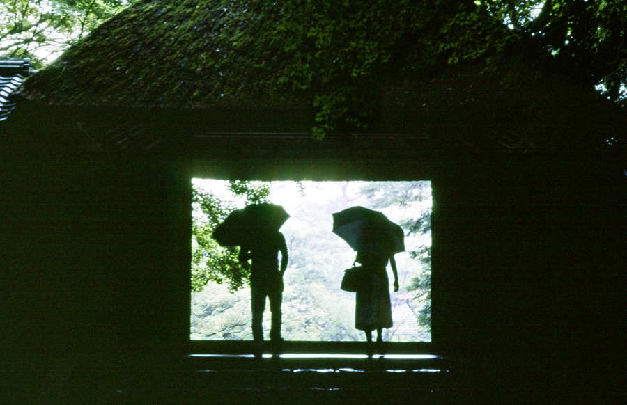 雨の法然院01