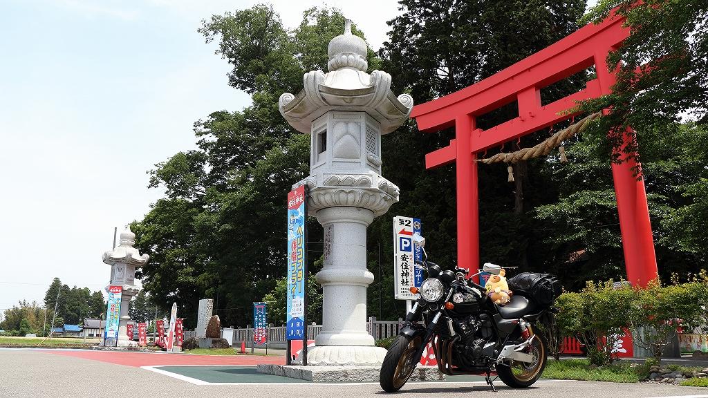 bike330.jpg